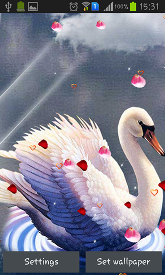 Download livewallpaper Swans: Love for Android. Get full version of Android apk livewallpaper Swans: Love for tablet and phone.