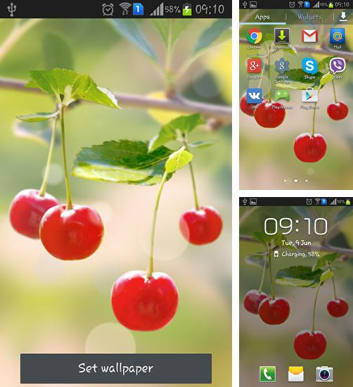 In addition to live wallpaper Easter for Android phones and tablets, you can also download Sweet cherry for free.