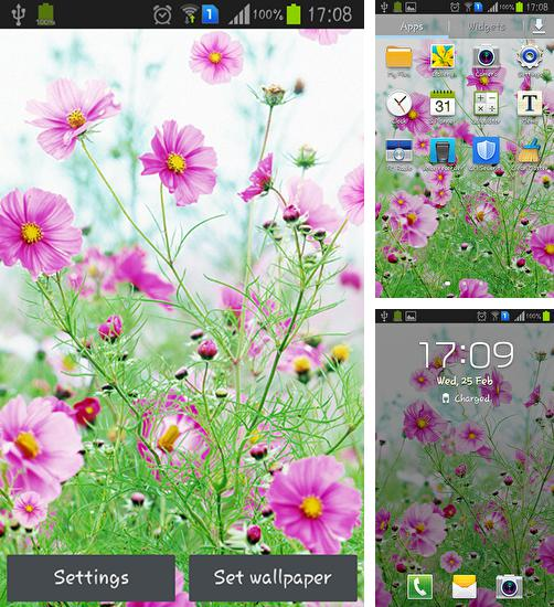 In addition to live wallpaper Snowflakes for Android phones and tablets, you can also download Sweet flowers for free.
