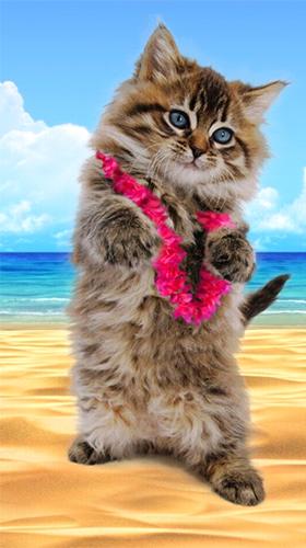 Talking Cat Dances And Purrs Pour Android à Télécharger