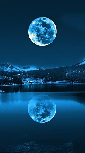Download The Moon paradise - livewallpaper for Android. The Moon paradise apk - free download.