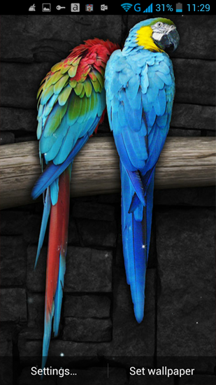 Screenshots of the Parrot for Android tablet, phone.