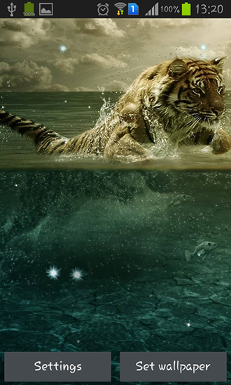 tigers live wallpaper for android tigers free download