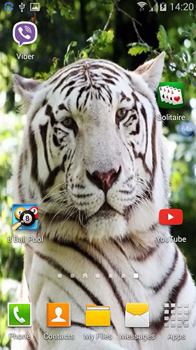 Download livewallpaper Tigers: shake and change for Android. Get full version of Android apk livewallpaper Tigers: shake and change for tablet and phone.