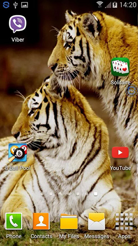 Download Tigers: shake and change - livewallpaper for Android. Tigers: shake and change apk - free download.