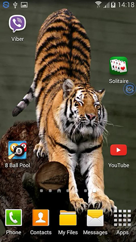 Screenshots of the Tigers: shake and change for Android tablet, phone.