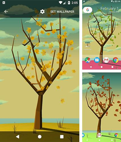 Baixe o papeis de parede animados Tree with falling leaves para Android gratuitamente. Obtenha a versao completa do aplicativo apk para Android Tree with falling leaves para tablet e celular.