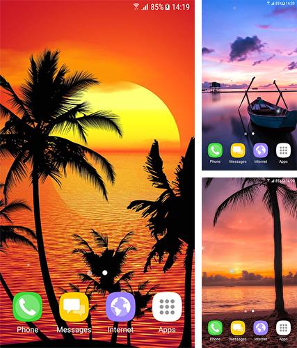 Tropical by BlackBird Wallpapers