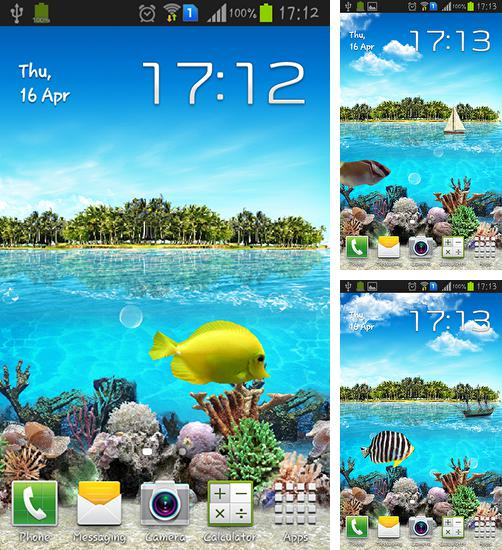 In addition to live wallpaper Multicolor for Android phones and tablets, you can also download Tropical ocean for free.