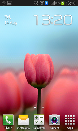 Tulip 3d live wallpaper for android tulip 3d free download for tulip 3d thecheapjerseys Image collections