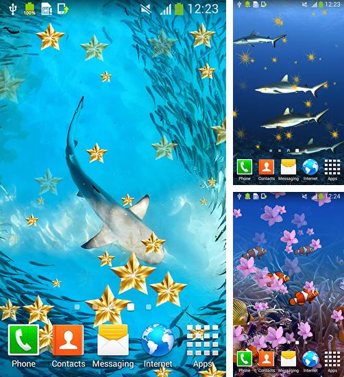 In addition to live wallpaper Playful pugs for Android phones and tablets, you can also download Underwater for free.
