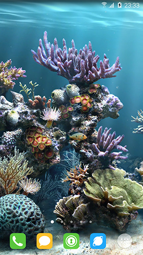 Download livewallpaper Underwater world by orchid for Android. Get full version of Android apk livewallpaper Underwater world by orchid for tablet and phone.