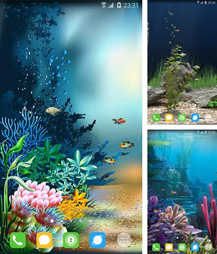 Baixe o papeis de parede animados Underwater world by orchid para Android gratuitamente. Obtenha a versao completa do aplicativo apk para Android Underwater world by orchid para tablet e celular.