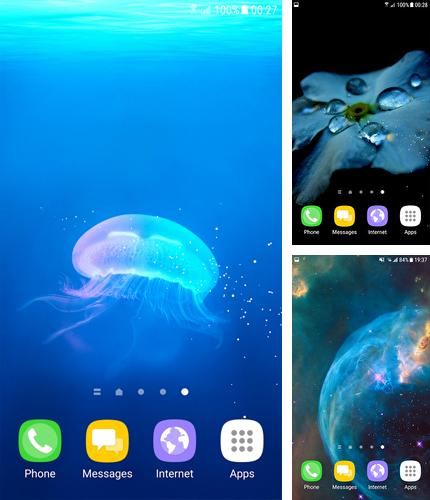 Download live wallpaper Wallpaper S8 for Android. Get full version of Android apk livewallpaper Wallpaper S8 for tablet and phone.