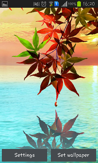 Screenshots von Water drop: Flowers and leaves für Android-Tablet, Smartphone.