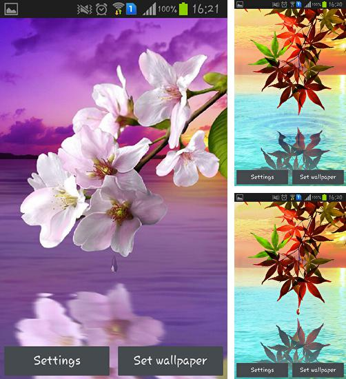 In addition to live wallpaper Beautiful spring flowers for Android phones and tablets, you can also download Water drop: Flowers and leaves for free.