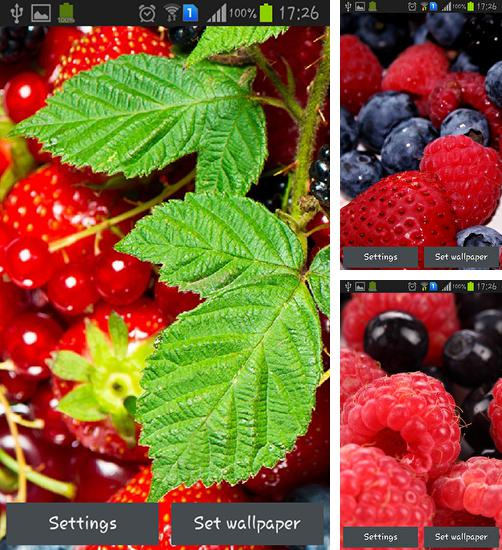 In addition to live wallpaper Garden for Android phones and tablets, you can also download Wild berries for free.