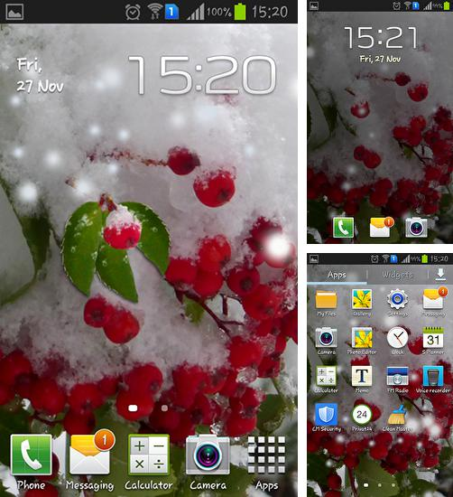 In addition to live wallpaper Bubbles for Android phones and tablets, you can also download Winter berry for free.