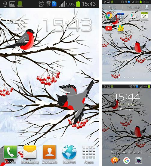 In addition to live wallpaper Summer landscape for Android phones and tablets, you can also download Winter: Bullfinch for free.