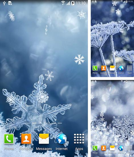 In addition to live wallpaper Neon lion for Android phones and tablets, you can also download Winter by Blackbird wallpapers for free.