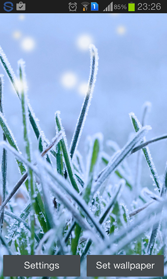Download livewallpaper Winter grass for Android. Get full version of Android apk livewallpaper Winter grass for tablet and phone.
