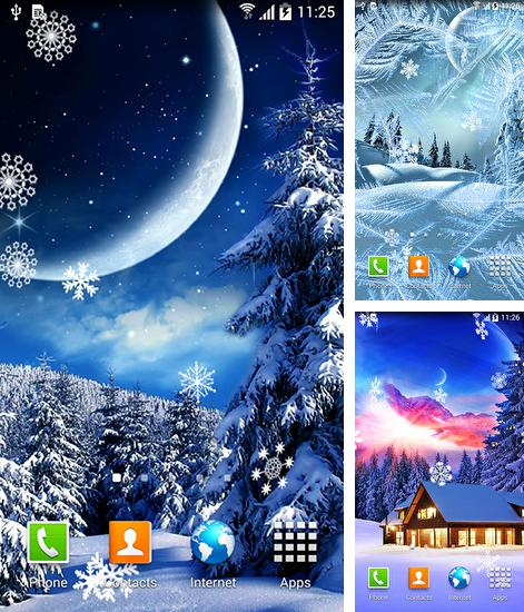 Download live wallpaper Winter night by Blackbird wallpapers for Android. Get full version of Android apk livewallpaper Winter night by Blackbird wallpapers for tablet and phone.