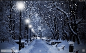 Winter snow - download free live wallpapers for Android. Winter snow full Android apk version for tablets and phones.