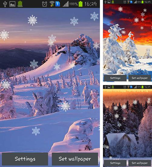In addition to live wallpaper Royal frog for Android phones and tablets, you can also download Winter sunset for free.