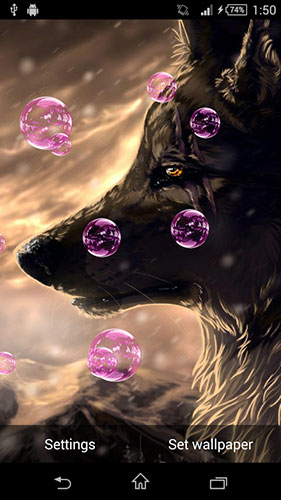Screenshots of the Wolf animated for Android tablet, phone.