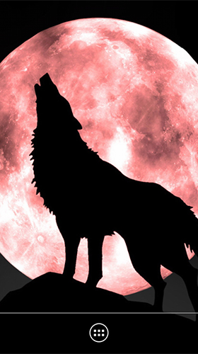 Download Wolf by orchid - livewallpaper for Android. Wolf by orchid apk - free download.