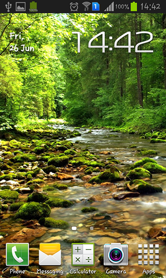 Wonderful forest river