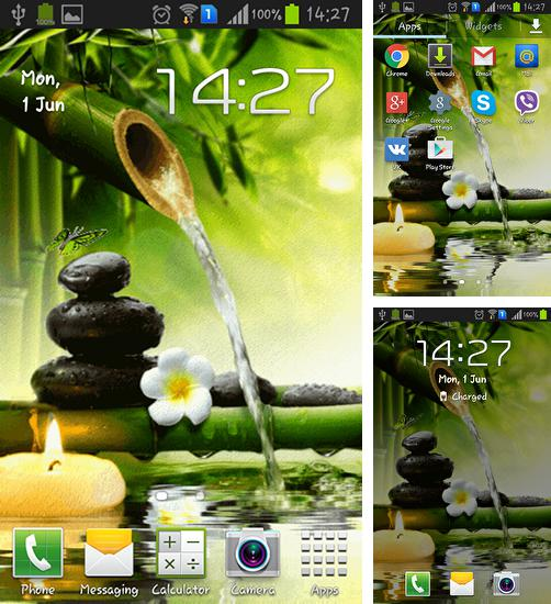 In addition to live wallpaper Zebra for Android phones and tablets, you can also download Zen garden for free.