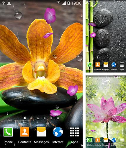 Kostenloses Android-Live Wallpaper Zen Garten. Vollversion der Android-apk-App Zen garden by BlackBird Wallpapers für Tablets und Telefone.