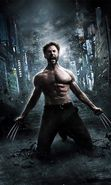 Download free mobile wallpaper 20786: Actors, Hugh Jackman, Cinema, People, Men for phone or tab. Download images, backgrounds and wallpapers for mobile phone for free.