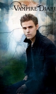Download free mobile wallpaper 28962: Actors,Cinema,People,Men,The Vampire Diaries for phone or tab. Download images, backgrounds and wallpapers for mobile phone for free.