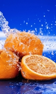 Download free mobile wallpaper 34486: Oranges,Food,Fruits for phone or tab. Download images, backgrounds and wallpapers for mobile phone for free.