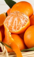 Download free mobile wallpaper 34912: Oranges,Food,Fruits for phone or tab. Download images, backgrounds and wallpapers for mobile phone for free.