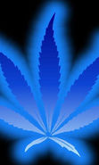 Download free mobile wallpaper 20891: Marijuana, Background for phone or tab. Download images, backgrounds and wallpapers for mobile phone for free.