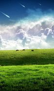 Download free mobile wallpaper 524: Landscape, Grass, Sky, Art for phone or tab. Download images, backgrounds and wallpapers for mobile phone for free.
