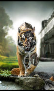 Download free mobile wallpaper 13942: Art, Robots, Tigers, Animals for phone or tab. Download images, backgrounds and wallpapers for mobile phone for free.