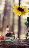 Download free mobile wallpaper 15211: Art photo, Flowers, People, Men, Sunflowers for phone or tab. Download images, backgrounds and wallpapers for mobile phone for free.