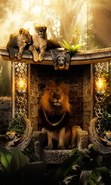 Download free mobile wallpaper 29336: Art photo,Lions,Animals for phone or tab. Download images, backgrounds and wallpapers for mobile phone for free.