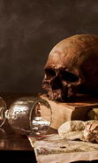 Download free mobile wallpaper 22746: Art photo, Still life, Objects, Skeletons, Death for phone or tab. Download images, backgrounds and wallpapers for mobile phone for free.