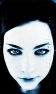 Download free mobile wallpaper 20956: Artists, Amy Lee, Evanescence, People, Music for phone or tab. Download images, backgrounds and wallpapers for mobile phone for free.
