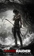 Download free mobile wallpaper 20934: Tomb Raider, Games for phone or tab. Download images, backgrounds and wallpapers for mobile phone for free.