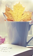 Download free mobile wallpaper 32825: Cups,Background,Leaves for phone or tab. Download images, backgrounds and wallpapers for mobile phone for free.