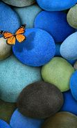 Download free mobile wallpaper 21566: Butterflies, Stones, Insects, Objects for phone or tab. Download images, backgrounds and wallpapers for mobile phone for free.
