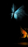 Download free mobile wallpaper 31521: Butterflies,Insects,Pictures for phone or tab. Download images, backgrounds and wallpapers for mobile phone for free.