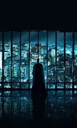Download free mobile wallpaper 14855: Batman, Cinema for phone or tab. Download images, backgrounds and wallpapers for mobile phone for free.
