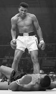 Download free mobile wallpaper 19601: Boxing, People, Men, Sports, Muhammad Ali for phone or tab. Download images, backgrounds and wallpapers for mobile phone for free.